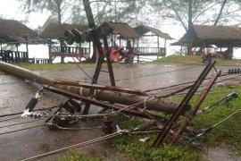 Tiang patah ditimpa pohong, listrik padam lima Kecamatan di Aceh Jaya