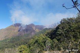 Ratusan hektare kawasan hutan Gunung Rinjani terbakar