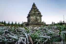 (FOTO) Dieng membeku, suhu minus 7 derajat. Begini penampakannya