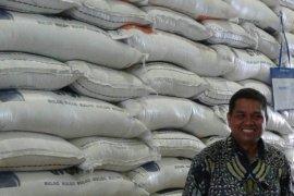 Stok beras Bulog Maluku aman lima bulan