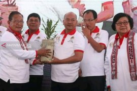 Tanaman Macadamia untuk rehabilitasi lahan kritis Danau Toba