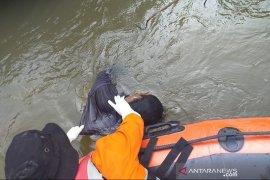 Tim SAR temukan warga hanyut di sungai