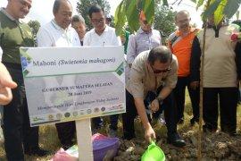 Alumni doktor Unsri tanam 2.000 pohon ajak jaga udara bersih