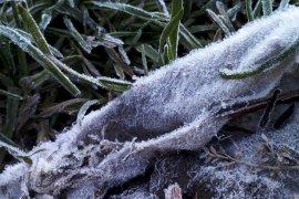 Cuaca esktrem dingin di Gunung Gede Pangrango tidak mengurangi minat pendakian