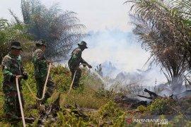 Kebakaran lahan gambut di Nagan Raya