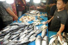 Mahalnya harga ikan di pasar tradisional Pontianak