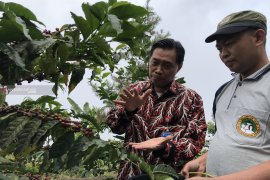 Bank Indonesia Malang dorong ekspor produk UMKM