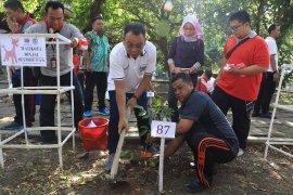 Wali Kota Binjai tanam pohon di hutan wisata Semarang