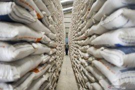 Peneliti minta Bulog  tingkatkan kualitas serapan beras