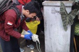 Satgas Ciliwung temukan warga Bogor Timur terindikasi buang limbah medis