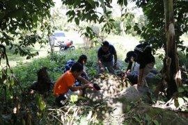 Tim Arkeologi teliti megalitik di desa Mamuya