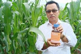 Kementan berdayakan lahan rawa sebagai areal pertanian