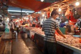 Harga ayam potong di Pontianak naik lagi