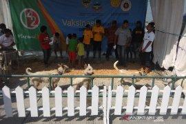 Garut pemasok anjing terbesar ke Sumatera