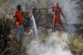 Sinergi atasi kebakaran hutan