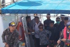 Menteri Kelautan Susi lepasliarkan bibit lobster di Nusa Penida