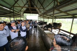 KPC berdayakan SDM lokal untuk kelola lahan pasca-tambang