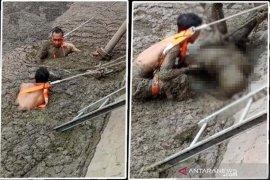Polisi: Karyawan tewas di kolam limbah sawit murni akibat kecelakaan