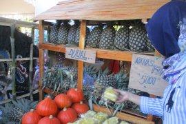 Petani nanas Kediri diuntungkan harga jual tinggi