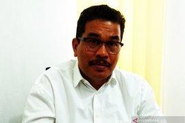 Pemerintah Aceh ganti ganja dengan jagung