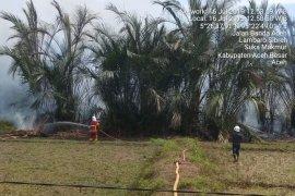 BPBD Aceh Besar kerahkan mobil pemadam kebakaran di lahan  rumbia