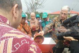 Wagub: Sumut harus jadi produsen kopi terbesar di Indonesia