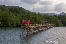 Wisata mangrove kelompok tani hutan Page 1 Small