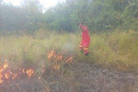 Wabup Bangka,  Syahbudin ajak masyarakat cegah kebakaran hutan