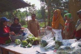 Kelompok tani wanita produksi sayuran bebas pestisida