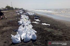 Tumpukan pasir bercampur minyak mentah jadi pemandangan baru di Pantai Sedari Karawang