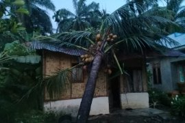 Belasan rumah warga di Langkat diterjang puting beliung