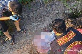 Polisi kumpulkan keterangan saksi terkait temuan orok bayi