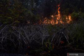 Polda Riau telusuri lima perusahaan terdeteksi titik api, berikut ini nama korporasinya