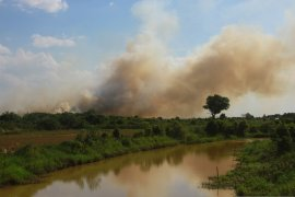Five land fires occur in Tapin
