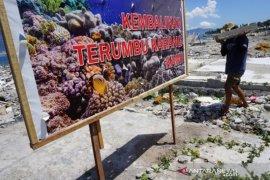 Transpalasi terumbu karang di lokasi tsunami Page 1 Small