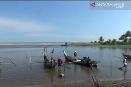 Hasil tangkapan nelayan Maligi Pasaman Barat Turun