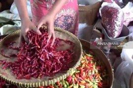 Harga cabai rawit merah di Madiun masih mahal