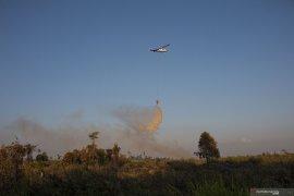 West Kalimantan police arrest 52 forest fire suspects