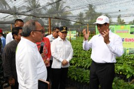 Nilai ekspor produk pertanian Indonesia  naik berlipat