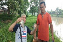 Dinas Lingkungan hidup teliti penyebab kematian ikan di Sei Padang