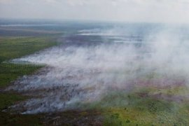BNPB calls nation's components to stop forest and land fires