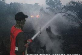Manggala Agni Singkawang padamkan 10 hektar lahan gambut yang terbakar
