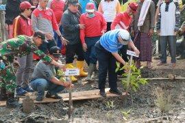 Lintas alam Tanjabbar bagian kampanye pelestarian mangrove
