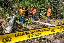 Labfor Polri dan petugas PLN cek lokasi ledakan SUTET penyebab padamnya listrik di Jawa