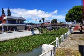 Eceng Gondok di Sungai Tondano, Butuh Perhatian Pemerintah Page 1 Small