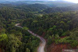 Pemerintah hentikan pemberian izin kelola baru hutan primer dan gambut