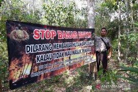 BNPB Bangka Tengah mencatat 50 kasus kebakaran hutan