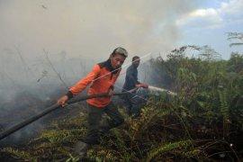 Upaya pemadaman karhutla Muarojambi gelar penyekatan kepala api