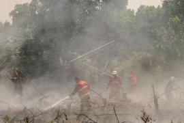 Asap karhutla membuat jarak pandang di Riau memburuk