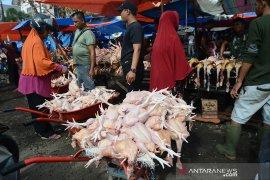 Daging ayam naik jelang Idul Adha